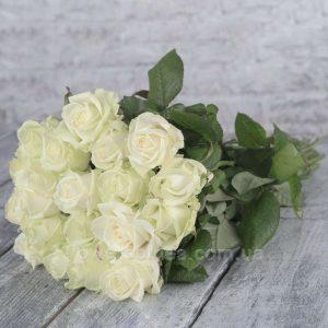 букет білих роз