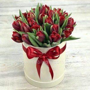 тюльпани в тубусі