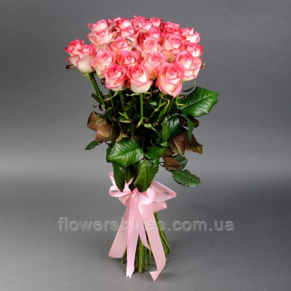 25 троянд фото