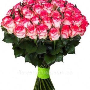 великі троянди