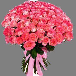 букет рожевих троянд 101 штука