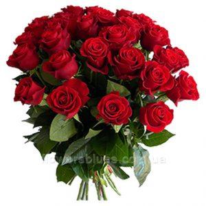 квіти троянди