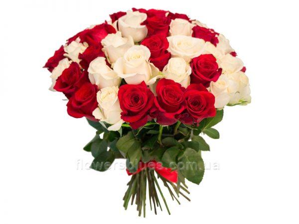 червоні і білі троянди