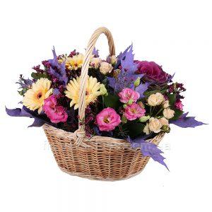 квіти стрий