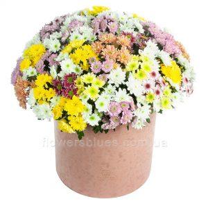 хризантеми букет